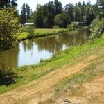 Silver Cove RV Resort | Silver Lake, WA | Canal