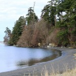 Bay View State Park | Mount Vernon, WA | Waterfront