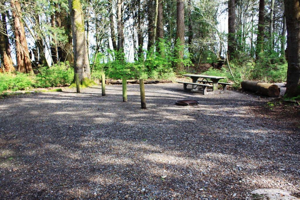 Birch Bay State Park  5 Star Campgrounds  RV Park Listings and
