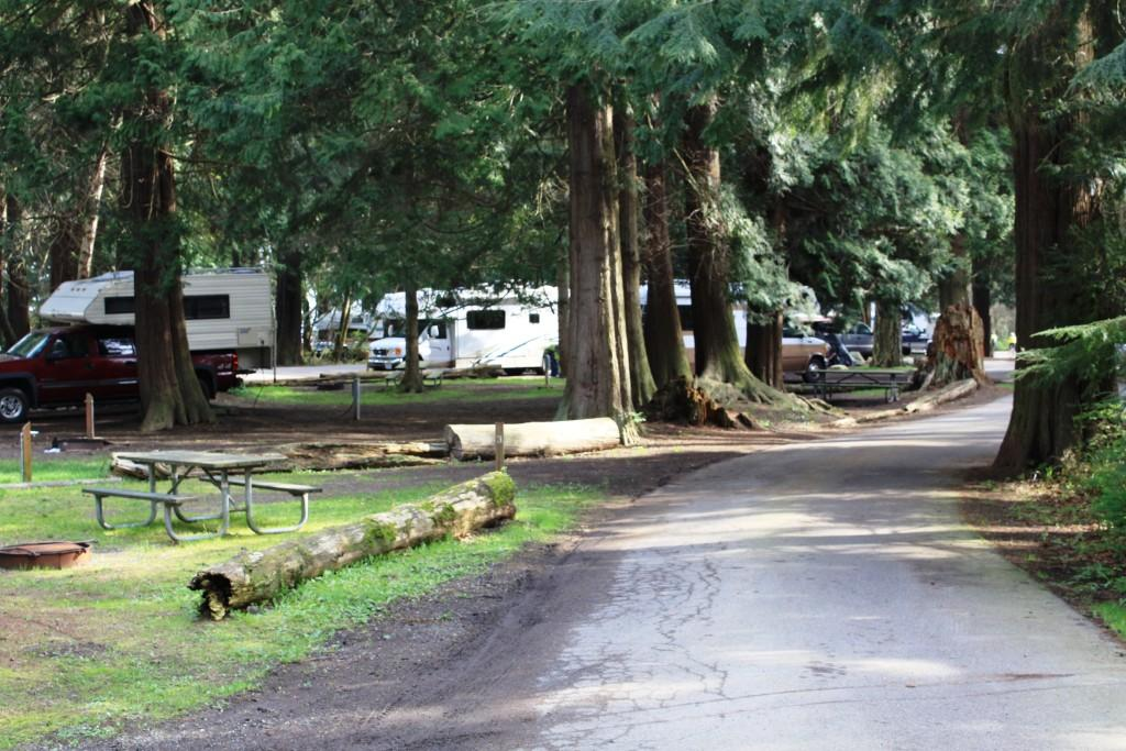 Rv Campgrounds Near Long Beach Wa