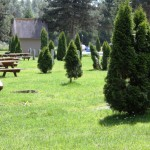 Burlington / Anacortes KOA | Burlington, WA | Campsites