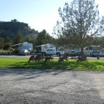Crooked River Ranch RV Park | Crooked River, OR | Wild Life