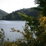 Loon Lake Lodge and RV Resort | Reedsport, OR