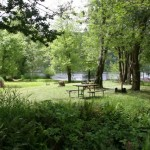 Loon Lake Lodge and RV Resort | Reedsport, OR | Campsites