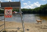 Swimming is not allowed at Ashland State Park this year.