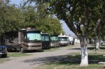 San Luis RV Resort | Santa Nella, CA | Campsites