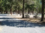 Sisters Oregon | City Campground | Campsites