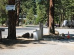 Sisters Oregon | City RV Park | Dump Station
